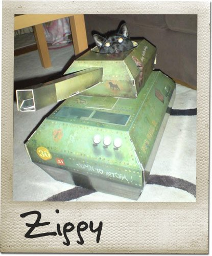 A UK Company Is Making Cardboard Trucks Tanks And Planes For Cats - This company makes cardboard tanks houses and planes for cats and theyre perfect